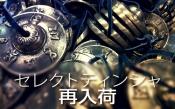東京ヨガウェア2.0のセレクトティンシャの良さ☆