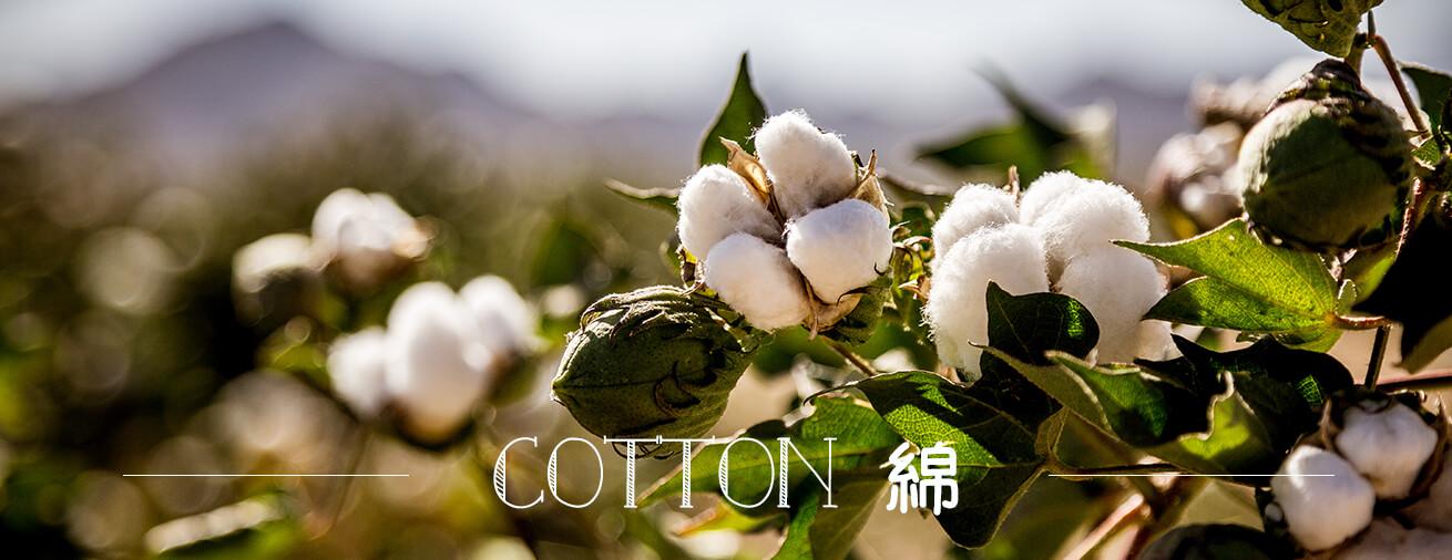 天然素材・コットン/綿を使用したヨガウェア一覧